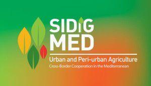SIDIGMED1-700x400_c